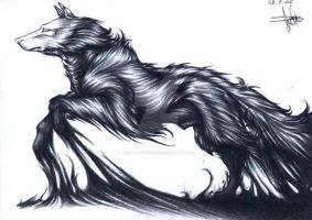 A White Wolf by TheSoulHunteress