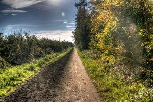 Feldweg HDR by Punikedas