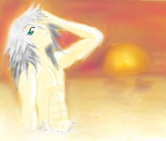 Sunset Destiny~Riku by brisingrlegacy