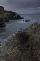 Somber Shores by twelvemotion
