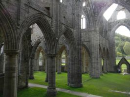 Tintern Abbey Remains by Zomit