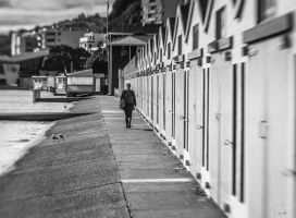 Walking past the Boat Shed by PauloHod