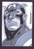 Captain America SketchCard by jeffwamester