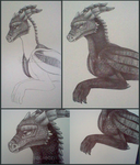 Pen sketch dragon .:WIP:. by SolarGem