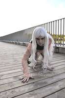 Crawling by Cesia