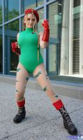 Cammy 4 Big Wow by Pokypandas