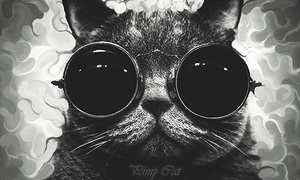 Pimp Cat by SquishFX