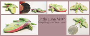 Little Luna Moth - SOLD by Bittythings