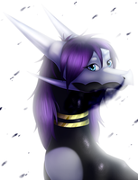 Stars and Darkness - commission by IcelectricSpyro