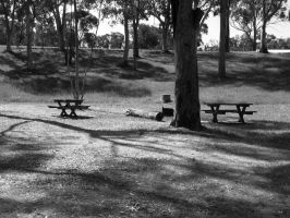 A Picnic Ground by Pianochick66