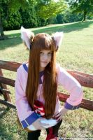 I am Horo the wise wolf. by Foxy-Cosplay