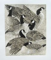 Geese by JAMiAm100