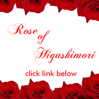 MM Rose of Higashimori by froznkamui