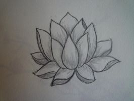 Lotus by Maudpx