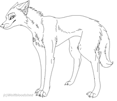 Female wolf by WolfBloodshed