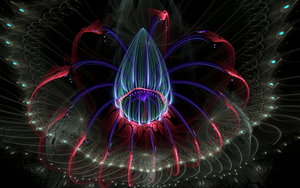 coloured flower bud in darkness by Andrea1981G