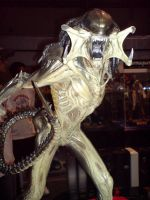 Predalien Maquette by liverpaudlianlady
