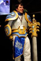 Pax East 2014 -Garen- by sethb1