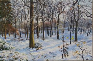 winter by george-roth