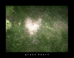 Grass Heart by Bloody-Lover