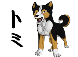 Tomy by wolfhound56200