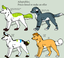 4 Canine Adopts OPEN by TheAdoptShop