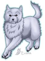 W.Higland White Terrier -IBC by tailfeather