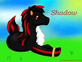 Shadow Pony by sexyback2010