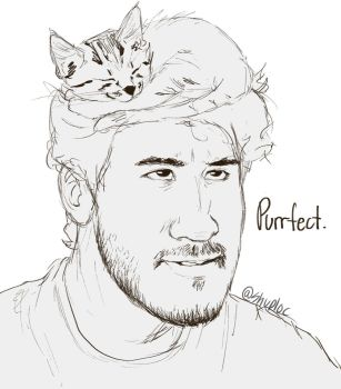 Markiplier (Cat hat) by Shuploc