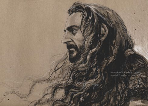 Thorin Oakenshield of new year by evankart
