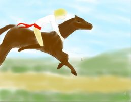 Poland's race in the fields by UsagiBard