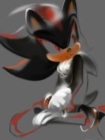 SHADOW IS Pure and Beautiful by lujji