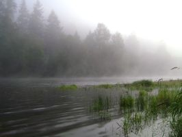 Foggy River I by snoogaloo