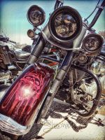 Motorcycle Front End by Shawna Mac by ShawnaMac