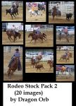 rodeo stock pack 2 by dragon-orb