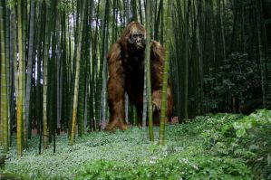 Gigantopithecus by Frank-Lode