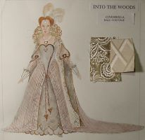 into the woods cinderella by thecostumedesigner
