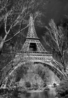 Eiffel in the Spring II by reefster39