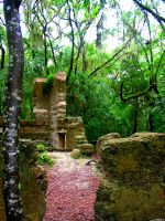 Jungle Ruins by Hippiemon
