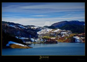 Zaovine_lake_dec_07 by Neshom