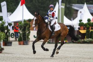 3DE Cross Country Arena Table Jump by LuDa-Stock