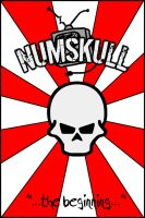 Numskull Cover 2 by alkaline