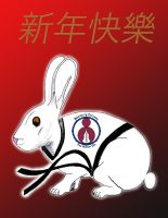 BC TKD chinese new year 2011 by MarioUComics