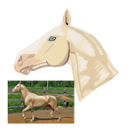 A is for Akhal-teke by TheManateeStables