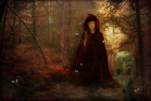 Little red riding hood by Le-Regard-des-Elfes