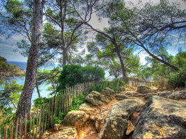 Les calanques by BluePalmTree
