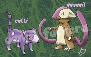 Coati Pokemon - 6th gen by farreer