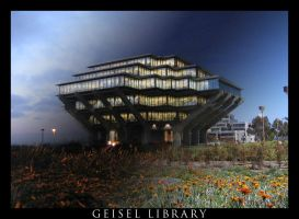Geisel Library Day to Night by unknowninspiration