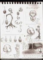 Sketch Page: Albino Aliens by TabathaZee