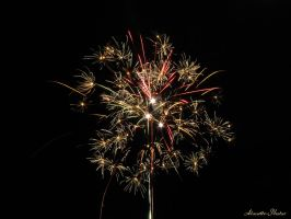 Firework VI. by Alouette-Photos
